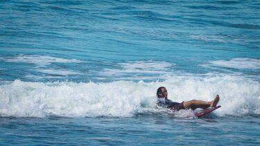 WAVES & SURFERS<br> <i><font color=